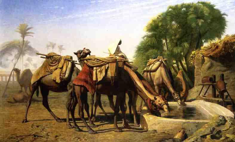 Жан-Леон Жером. Верблюды у поильного корыта.